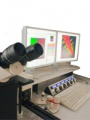 Confocal Microscopes Leica TCS SP5